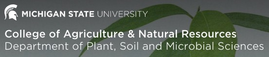 Michigan State University Crop and Soil Science Department logo